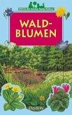 Ensslins kleine Naturführer. Waldblumen