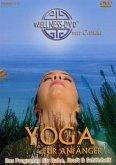 Wellness: Yoga für Anfänger