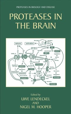 Proteases in the Brain - Lendeckel, Uwe / Hooper, Nigel M. (eds.)