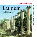 Latinum in fenestris, 1 CD-ROM / Latinum, Ausgabe B