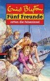 Fünf Freunde retten die Felseninsel / Fünf Freunde Bd.45