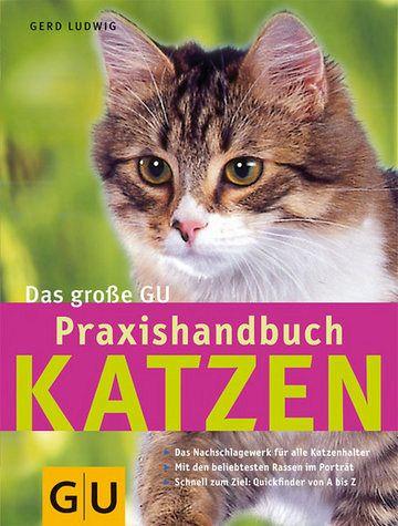 Katzen, Das große GU Praxishandbuch - Ludwig, Gerd