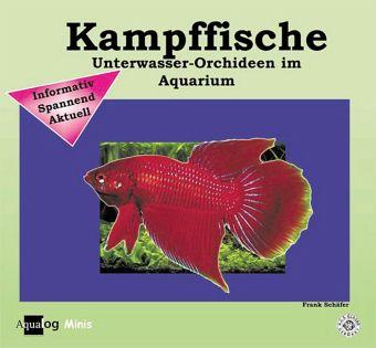 Kampffische von frank sch fer buch for Kampffische arten