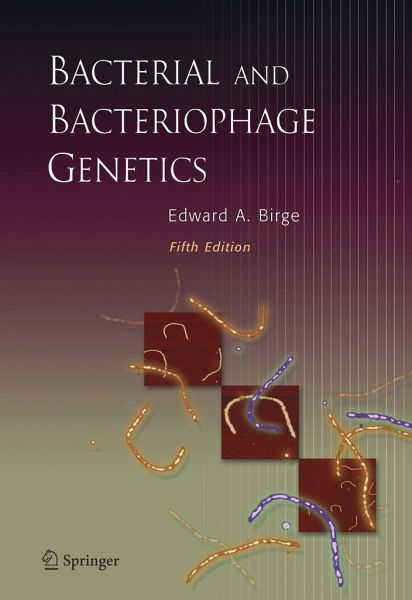 Bacterial And Bacteriophage Genetics Von Edward A Birge border=