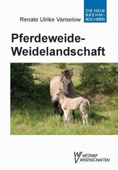 Pferdeweide-Weidelandschaft