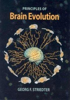 Brain Evolution - Striedter, Georg F.