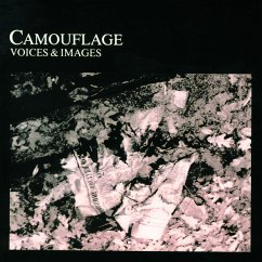 Voices And Images