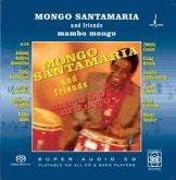 Mambo Mongo (Mehrkanal)
