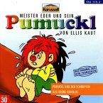 Pumuckl und der Schnupfen/Das grüne Gemälde / Pumuckl Bd.30 (1 Audio-CD)