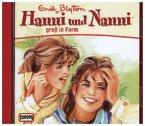 Hanni und Nanni groß in Form / Hanni und Nanni Bd.10 (1 Audio-CD)
