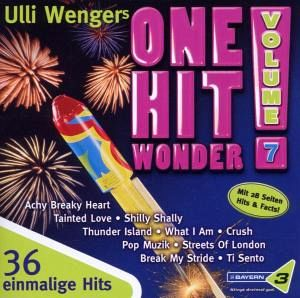 One Hit Wonder-Vol.7 - Diverse