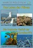 Das Leben der Möven / Die tropische Vielfalt der Korallenriffe