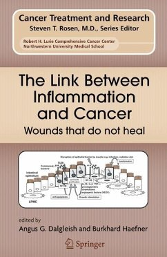 The Link Between Inflammation and Cancer - Dalgleish, Angus / Haefner, Burkhard (eds.)