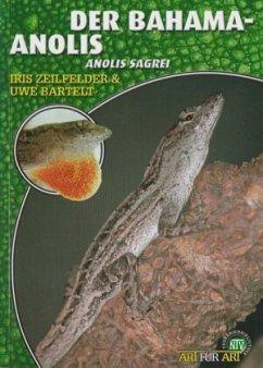 Der Bahama-Anolis - Bartelt, Uwe; Zeilfelder, Iris