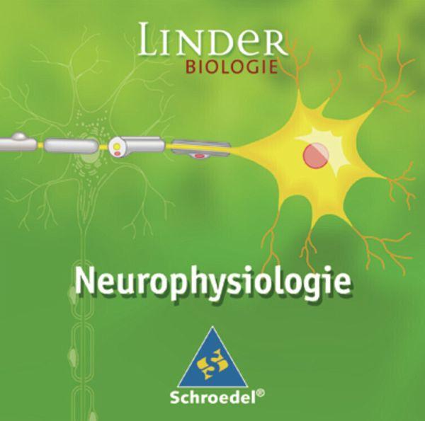 Neurophysiologie Studium