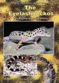 The Eyelash Geckos