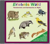 Erlebnis Wald, 1 Audio-CD
