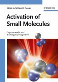 Activation of Small Molecules