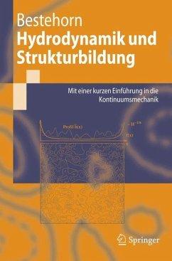 Hydrodynamik und Strukturbildung