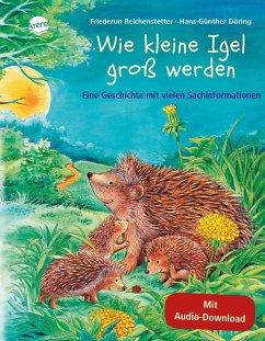 Wie kleine Igel groß werden / Hör gut hin (m. Audio-CD) - Reichenstetter, Friederun; Döring, Hans-Günther