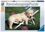 Ravensburger 14179 - Golden Retriever, 500 Teile Puzzle