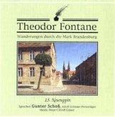 Neuruppin, 1 Audio-CD / Wanderungen durch die Mark Brandenburg, Audio-CDs Tl.13