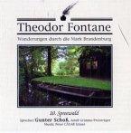 Spreewald, 1 Audio-CD / Wanderungen durch die Mark Brandenburg, Audio-CDs Tl.10