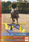 DVD - Dual-Aktivierung; ., DVD-Video