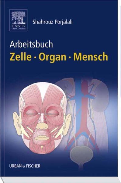 Arbeitsbuch Zelle - Organ - Mensch - Porjalali, Shahrouz