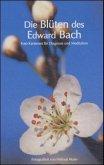 Die Blüten des Edward Bach