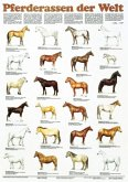 Pferderassen der Welt / Schreiber Naturtafeln