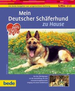 Mein Deutscher Schäferhund zu Hause