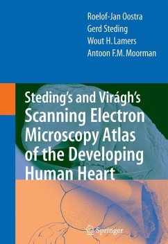Steding's and Virágh's Scanning Electron Microscopy Atlas of the Developing Human Heart - Oostra, Roelof-Jan; Steding, Gerd; Lamers, Wout H.