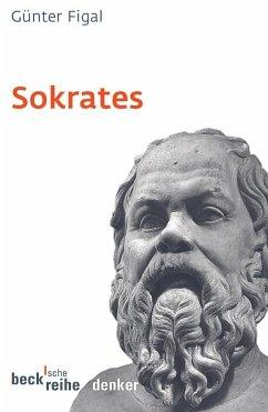 Sokrates - Figal, Günter
