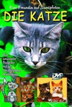 Eine Freundin auf Samtpfoten - Die Katze