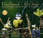 Vogelstimmen Bird Songs