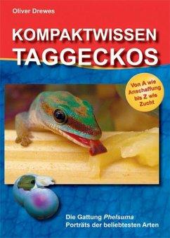 Kompaktwissen Taggeckos - Drewes, Oliver