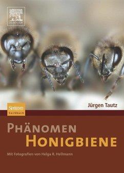 Phänomen Honigbiene - Tautz, Jürgen