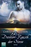 Dunkler Rausch der Sinne / Dark Carpathians Bd.8