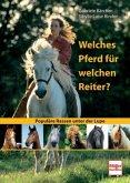Welches Pferd für welchen Reiter?