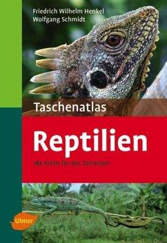 Taschenatlas Reptilien - Henkel, Friedrich-Wilhelm; Schmidt, Wolfgang
