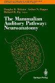 The Mammalian Auditory Pathway: Neuroanatomy