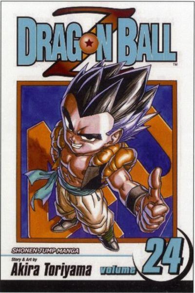 Dragonball Buch