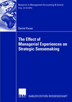 The Effect of Managerial Experiences on Strategic Sensemaking - Kauer, Daniel