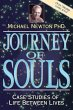 Journey of Souls: Case Studies …
