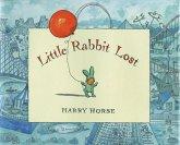Little Rabbit Lost