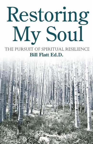 Restoring My Soul: The Pursuit of Spiritual Resilience - Flatt, Bill W.