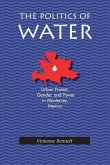 The Politics of Water: Urban Protest, Gender, and Power in Monterrey, Mexico