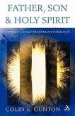 Father, Son and Spirit: Essays Toward a Fully Trinitarian Theology