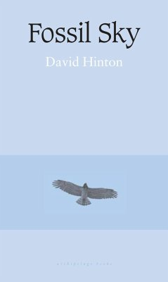 Fossil Sky - Hinton, David